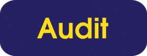 AuditButton